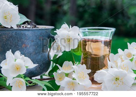 White jasmine tea with jasmine flowers on a green background