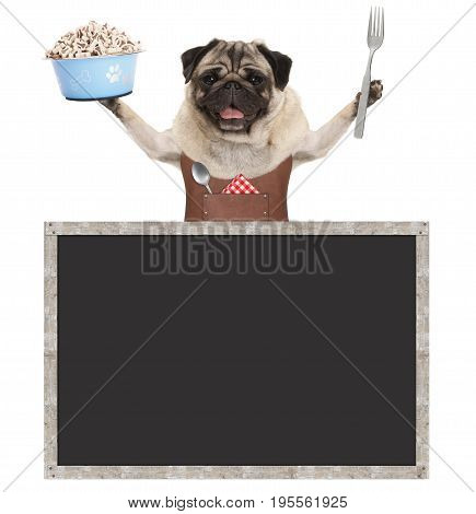 sweet smiling pug puppy dog holding food bowl with treats and wearing leather apron with blank blackboard sign isolated on white background
