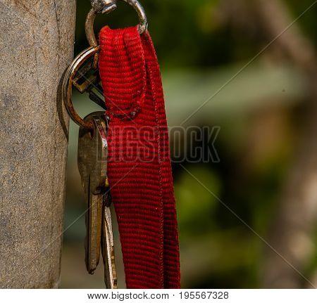 Keys On Red Strap Keyring