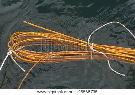 Bamboo Sticks In Water