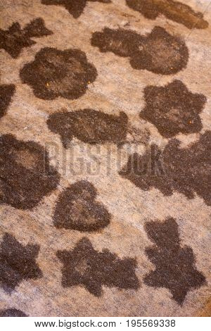 gingerbread traces on baking paper texture for background