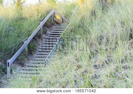 Wooden Stairs Leading Over Long Grasses And Sand Dune