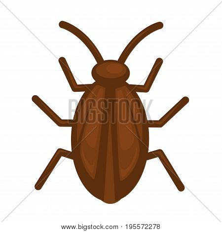 Cockroach in brown color isolated on white vector illustration in graphic design. Dangerous bug making harm for people and their things. Closeup portrait of natural creature with many long legs