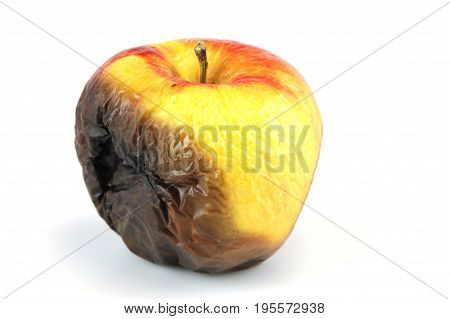 single rotten apple isolated on white background