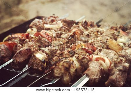 Delicious Grilled Meat, Fried In Nature.