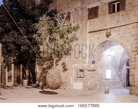 Tel Aviv -Yafo, Israel, July 08, 2016 : Orange hanging tree growing from a ossicle at night in old city Yafo Israel.