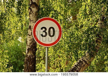 Road sign speed limit near a birch tree road