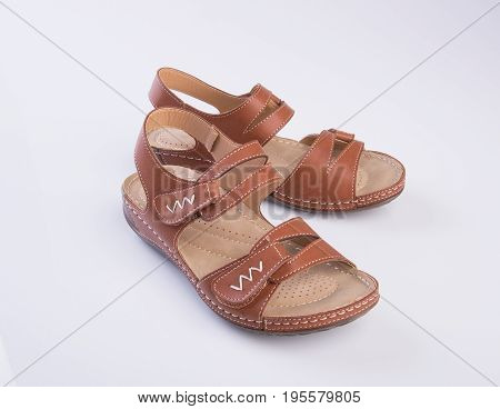 Shoe Or Brown Colour Casual Woman Shoes On A Background.