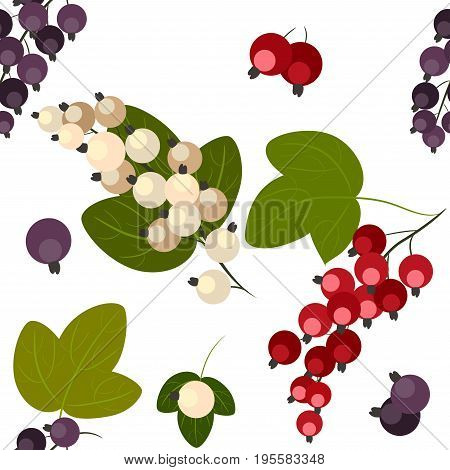 Seamless pattern, black, white and red currants with leaves isolated on white background, vector illustration