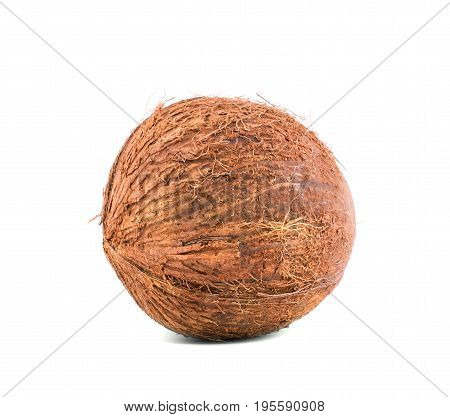 Brown scratchy coconut with clipping path isolated on a white background. Tasteful coco for summer diets. Healthful nuts full of vitamins. Healthy lifestyle.