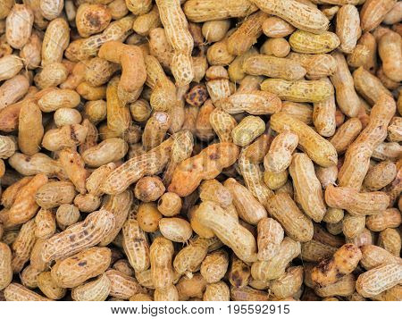 Peanut Or Groundnut Boiled For Appetizer
