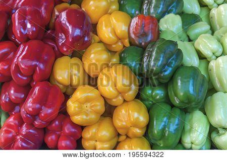 Organic healthy fresh garden several colorful paprika at market