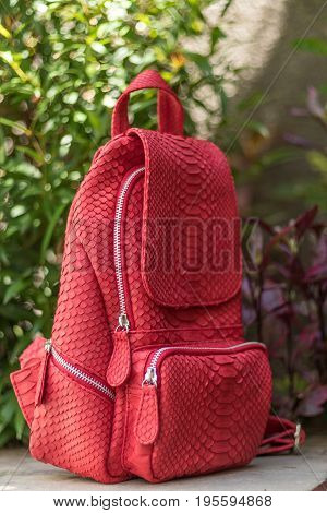 Stylish red leather snkeskin python rucksack near the swimming pool.