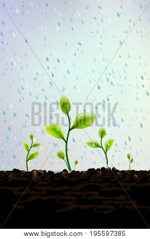 Rain falls on small green plants sprouting from soil - vector illustration