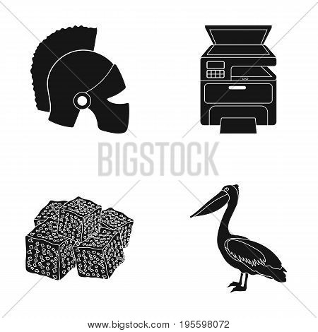 Helmet, printer and other  icon in black style. sweetness, Pelican icons in set collection.
