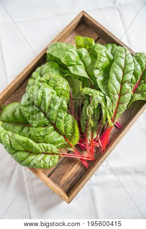 Variety of fresh chard mangold salad leaves
