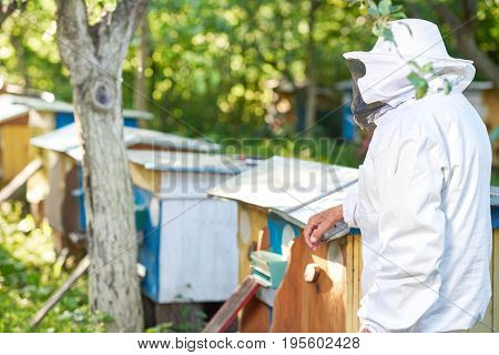 Rearview shot of a beekeeper in beekeeping suit standing near row of beehives at his apiary copyspace.