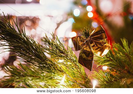 Golden bow on a background of  green Christmas tree branches