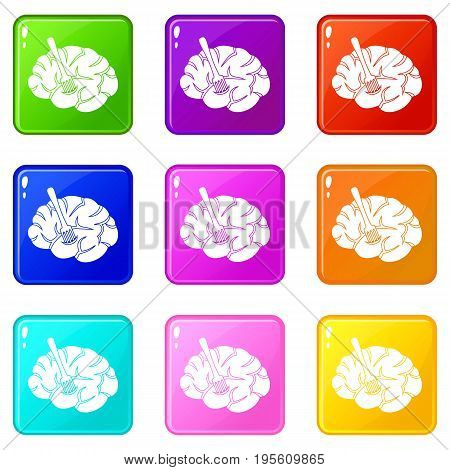 Fork is inserted into the brain icons of 9 color set isolated vector illustration