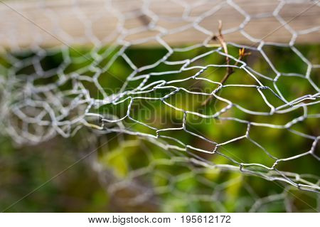 Wire fence with green grass on background. Garden green color grid fence. fence with broken wire