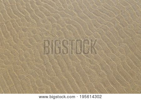 Ripple marks on a sandy beach in Brittany France