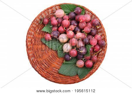 A light brown basket with ripe multi-colored gooseberries, isolated on a white background. Fresh bright gooseberries in the wooden crate. Nutritious fruit ingredient. Juicy and sour berries.