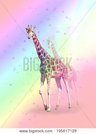 Photo manipulation of two giraffe in colorful light