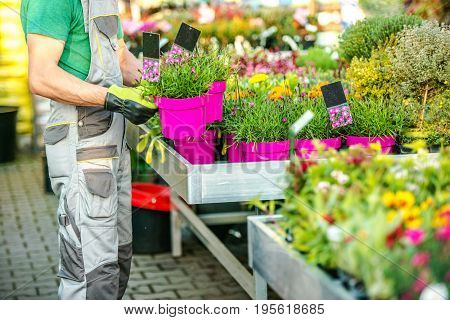 Florist and His Flowers Business. Caucasian Garden Store Owner. Gardening and Landscaping. Floristry Industry Theme.