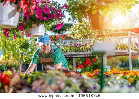 Caucasian Florist in His 30s in the Garden Store. Gardening and Landscaping Theme.