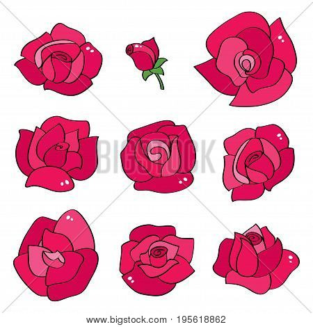 Vector set with line roses. Hand drawn flowers with with contours for background greeting cards and invitations of the wedding, birthday, Valentines Day