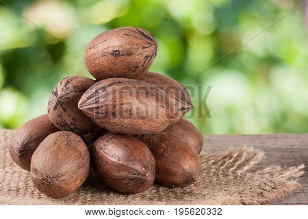 a bunch of pecan nuts on a wooden background with burlap and blurred garden background.