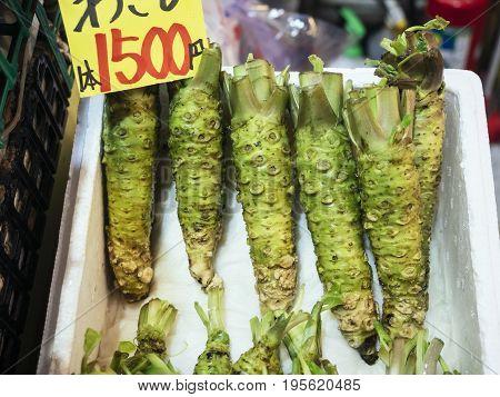 Wasabi Fresh Japanese horseradish sell in Market