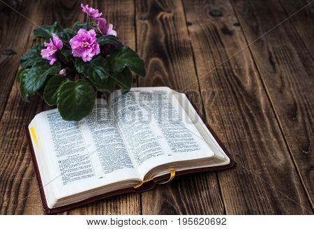 Violets And Bible On Wooden Background