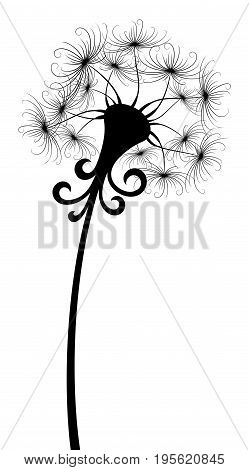 The Flowers stylized field dandelion with seeds.