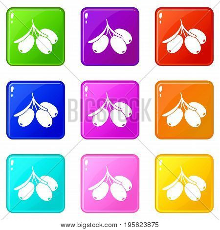 Sea buckthorn branch icons of 9 color set isolated vector illustration