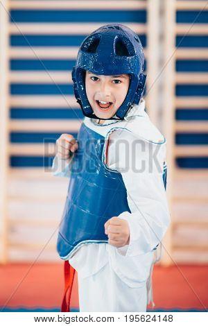 Taekwondo Boy on training indoors toned image color image