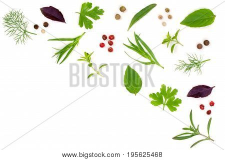 Fresh spices and herbs isolated on white background. Dill parsley basil thyme tartun peppercorns. Top view.