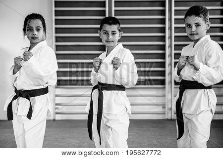 Taekwondo Children On Training Indoors, Black And White Image