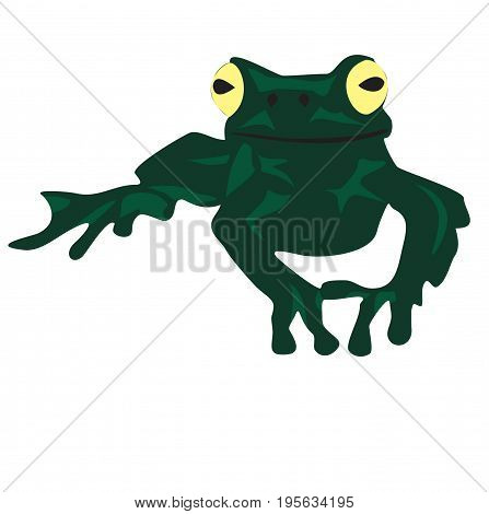 Green frog in flat style isolated on white background. Frog icon for web design