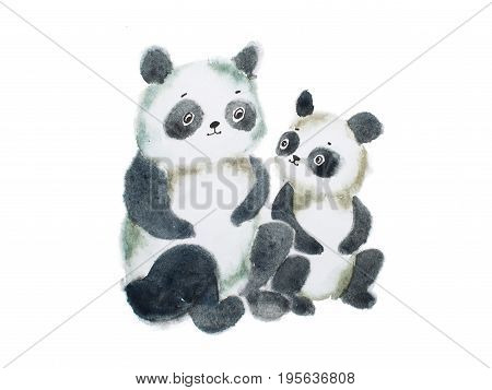 Two cute furry panda bears hand painted with watercolors.