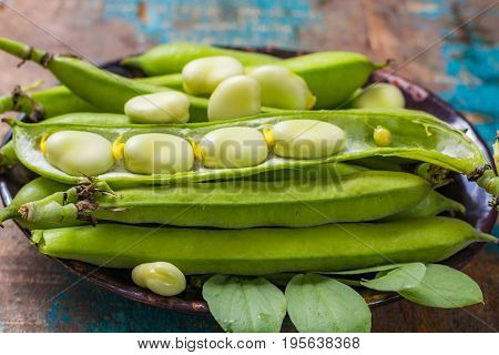 Healthy Fresh Legumes, New Harvest On Broad Lima White Beans
