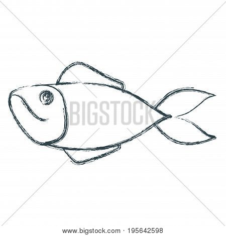blue dark silhouette of trout fish vector illustration