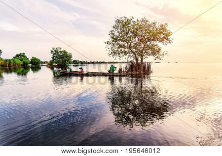 Pak Pra-PhatthalungCork tree in the lake with reflection in the water at Pakpra village Phatthalung Thailand. Image contain certain grain or noise and soft focus