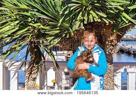 Girl Holds Of Raccoon. Sochi Seaport, Russia