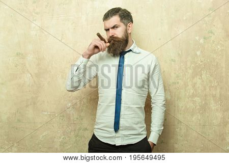 cigar at bearded man or hipster with long beard and stylish hair on serious face in tie and white shirt on textured beige background smoking copy space