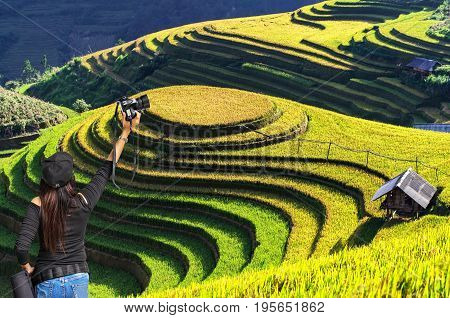 Professional woman photographer taking outdoor portraits with prime lensRice fields on terraced of Mu Cang Chai YenBai Vietnam soft focus