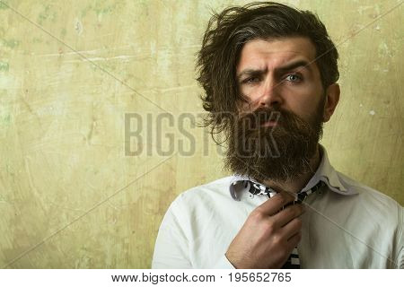 Hipster Man With Long Beard In Shirt And Tie