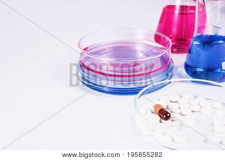 pills analyzing. pills and color liquid in petri dishes. laboratory, science and clinic background.
