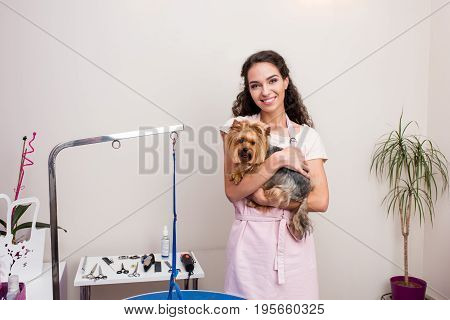 Beautiful Young Groomer Holding Cute Yorkshire Terrier Dog And Smiling At Camera In Pet Salon