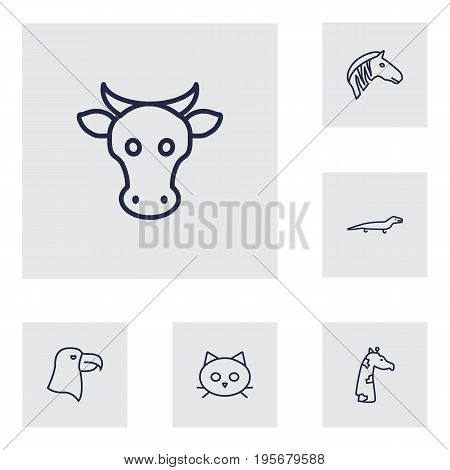 Set Of 6 Animal Outline Icons Set.Collection Of Giraffe, Cat, Cow And Other Elements.